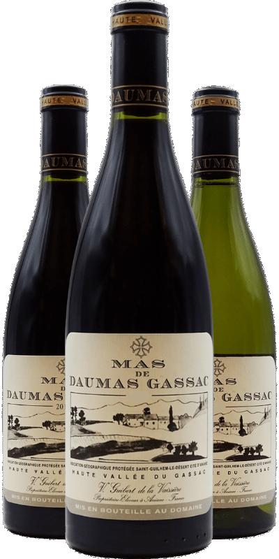 Mas de Daumas Gassac : le grand nom du Languedoc