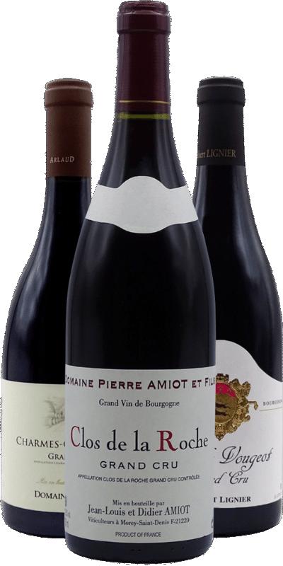 100% Pinot Noir : la magie d'un cépage légendaire