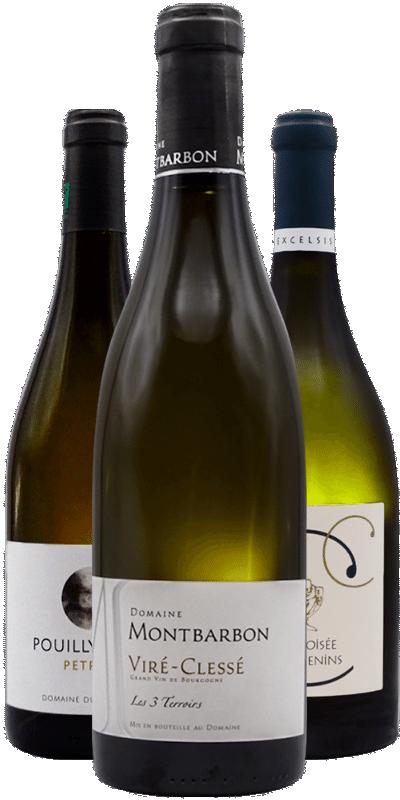 Vins blancs ciselés et incisifs : ode à la minéralité