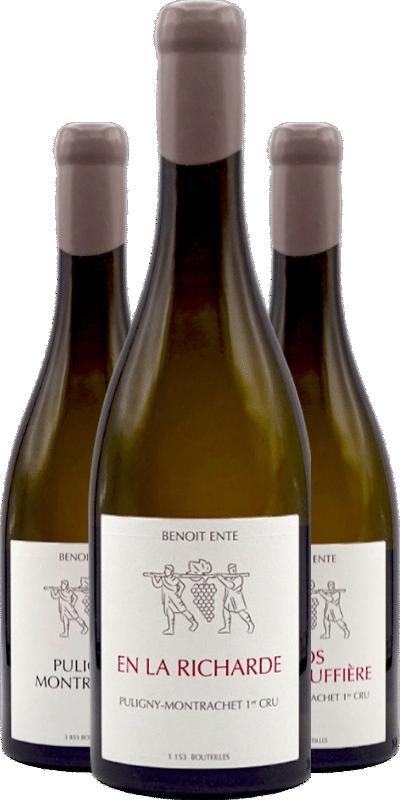 Benoit Ente : des vins incisifs, puissants et lumineux