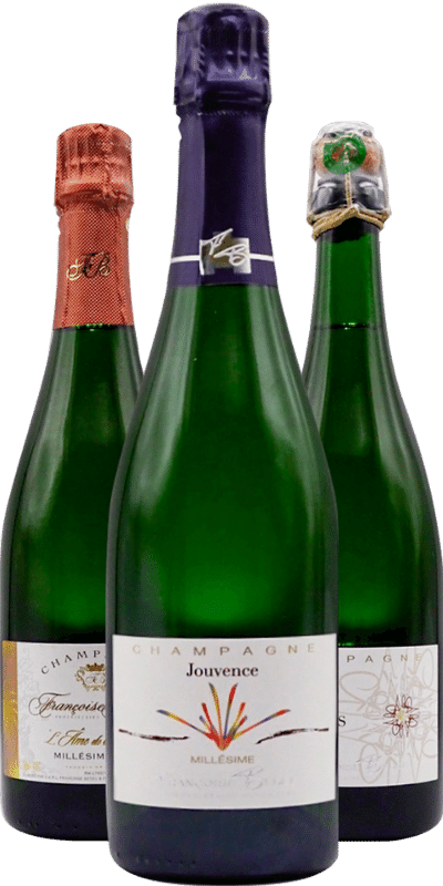 Champagne Françoise Bedel : entre velours et dentelle