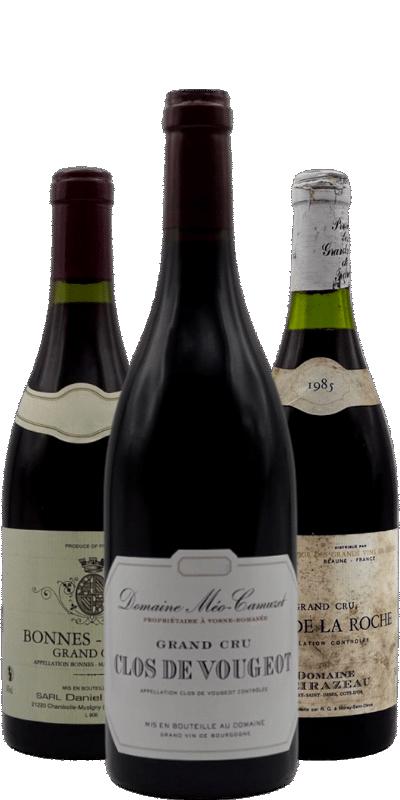 La Bourgogne et ses Grands Crus : florilège de grands vins de garde et de millésimes évolués