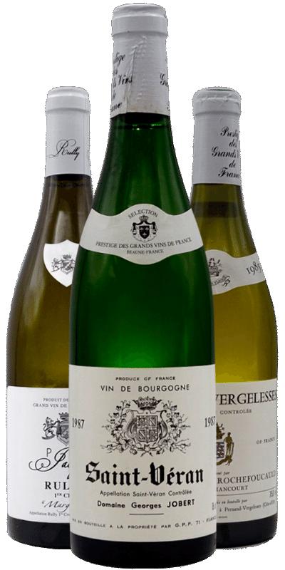 Bourgognes blancs à prix doux : quand le Chardonnay illumine les journées d'été