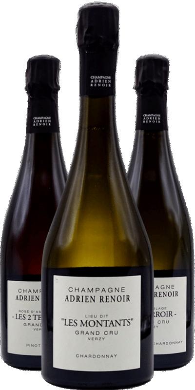 Champagne Adrien Renoir: une puissante interprétation des terroirs argilo-calcaires de Verzy